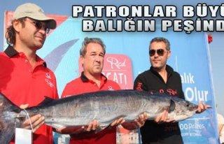 Patronlar Büyük Balığın Peşinde