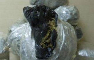 Otomobil Bagajından 50 Kilo Esrar Çıktı