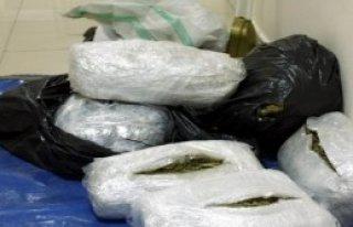 Evdeki 20 Kilo Esrara Tutuklama