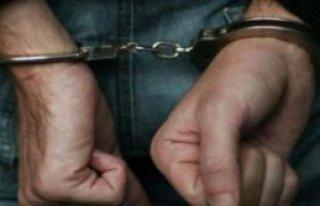 Hakkari'de 9 Gözaltı