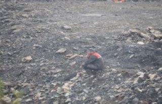 Maden Faciasında 20'nci Gün