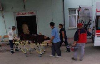Motorlu Testereyle Eşini Yaraladı