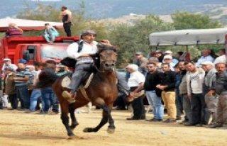 Rahvan Atlar Ödemiş'te Yarıştı