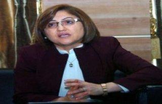 Şahin'den CHP'li Tanal'a Tepki