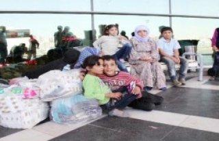 Şanlıurfa Otogarında Suriye Yoğunluğu