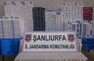 Şanlıurfa'da 13 Bin Paket Kaçak Sigara