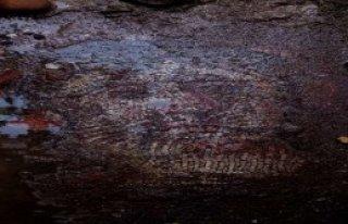 Yeraltından Tarih Fışkırıyor