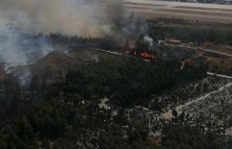 İzmir yine yandı!