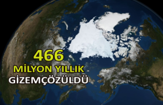 466 milyon yıllık gizem çözüldü