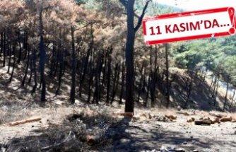 İzmir'in çiğerleri yanmıştı: seferberlik başladı
