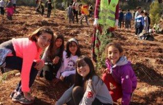 'Geleceğe Nefes Kampanyası' ormancıları ikiye böldü