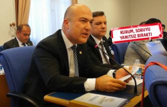 İzmir'deki 33 jeotermal ihalesi meclis gündeminde