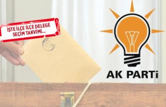 AK Parti İzmir'de delege seçimleri başlıyor