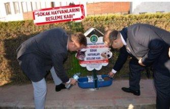 Menemen Belediyesi'nden can dostlar için örnek proje