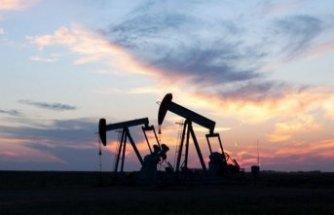 Petrol fiyatları yüzde 30 düşebilir