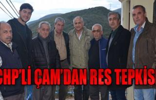 CHP'li Çam, RES'lere Tepki Gösterdi