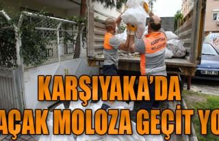 Kaçak Moloza Göz Açtırılmıyor