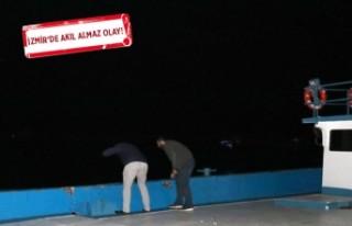 Park halindeki araç, sürücüsü varken denize düştü!