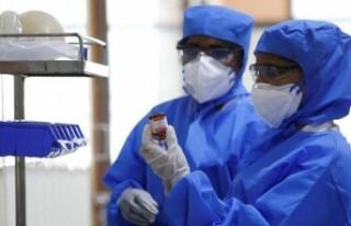Corona virüsüne karşı geliştirilen ilacın testleri...