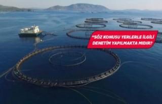 İzmir'de tepki çeken balık çiftlikleri meclis...