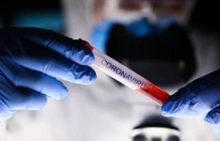 Koronavirüs, Türkçeyi de etkiledi... 'Yeni...