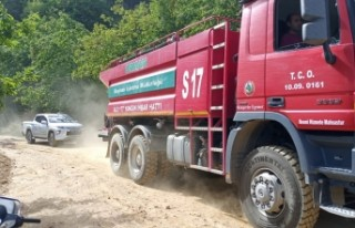 Ödemiş'te orman yangını kontrol altına alındı