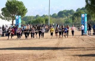 Türkiye Kros Şampiyonası, Denizli'de yapıldı