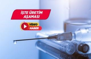 Yerli Kovid-19 aşısı üretimi görüntülendi