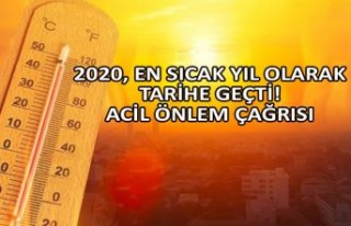 2020, en sıcak yıl olarak tarihe geçti! Acil önlem...