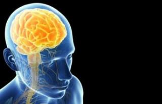 Beyinleri toksinden arındıran en doğal yöntem