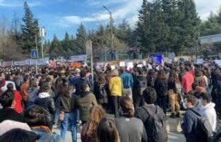 Boğaziçi Üniversitesi'nde bir istifa daha