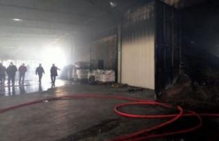 İzmir'de kuruyemiş fabrikasında yangın çıktı