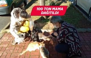 İzmir Valiliği öncülüğünde sokak hayvanları...