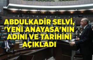 Abdulkadir Selvi, 'yeni anayasa'nın adını...