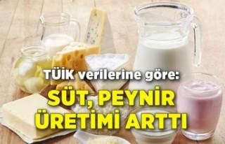 Ayran, yoğurt üretimi azaldı, süt, peynir üretimi...