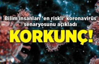 Bilim insanları 'en riskli' koronavirüs...