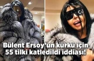 Bülent Ersoy'un kürkü için 55 tilki katledildi...