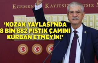 'Kozak Yaylası'nda 8 bin 882 fıstık çamını...