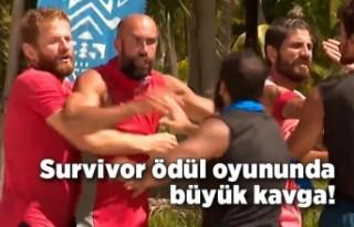 Survivor ödül oyununda büyük kavga!