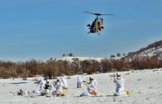 Tunceli'de terörü yok etme mücadelesi sürüyor
