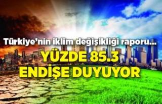 Türkiye'nin iklim değişikliği raporu… Yüzde...