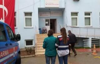 6 ilde PKK/KCK operasyonu: 14 gözaltı
