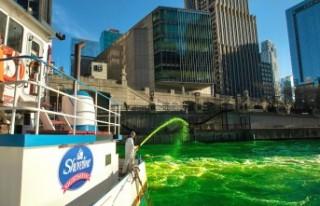 ABD'de Chicago Nehri, yonca yeşili oldu