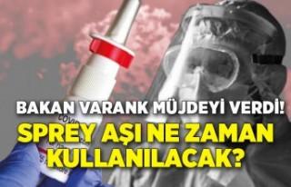 Bakan Varank: Sprey aşının yıl içinde kullanıma...
