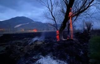 Burdur'da 50 dönüm sazlık yandı