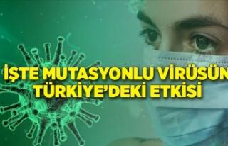 İşte mutasyonlu virüsün Türkiye'deki etkisi