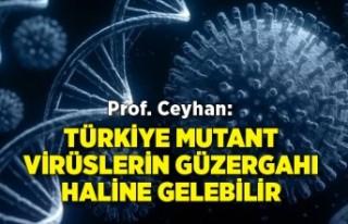 Prof. Ceyhan: Türkiye mutant virüslerin güzergahı...