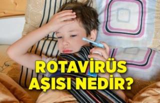 Uzmanlar, rotavirüse karşı aileleri uyardı