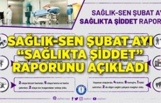 """Sağlık-Sen Şubat ayı """"Sağlıkta Şiddet""""..."""