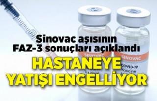 Sinovac aşısının Türkiye'deki FAZ-3 sonuçları...